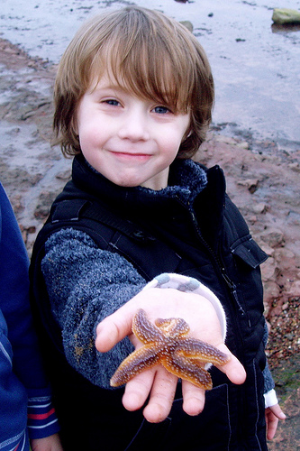 be best friends with starfish!